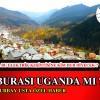 Biz Nerede Yaşıyoruz Burası Uganda mı?