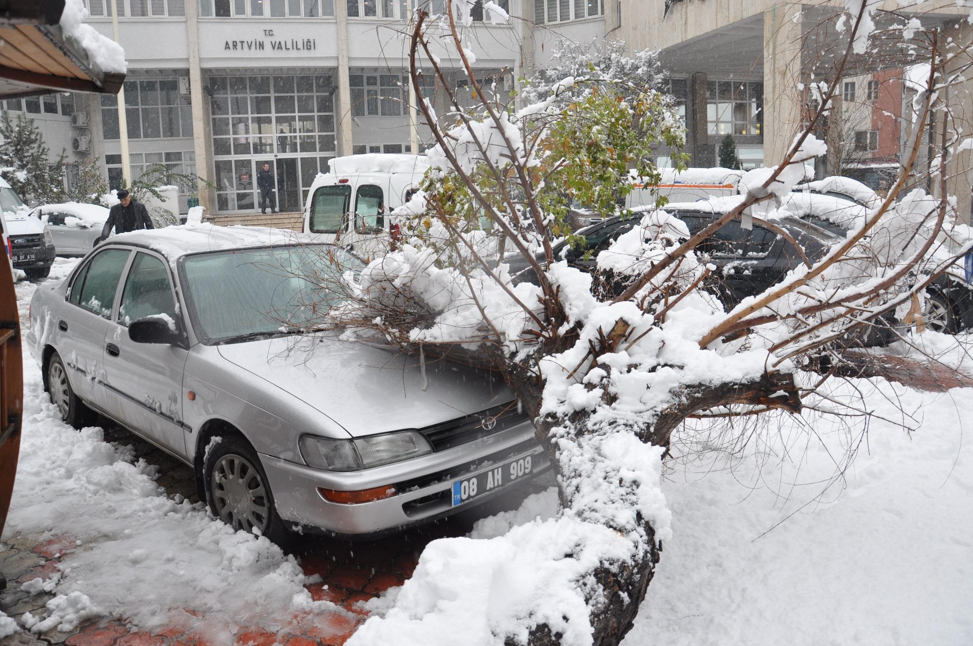 Artvin'de Kar, Kazaları Beraberinde Getirdi
