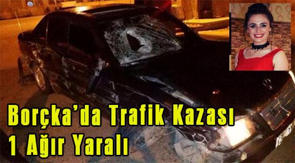 Borçka'da Trafik Kazası 1 Ağır Yaralı