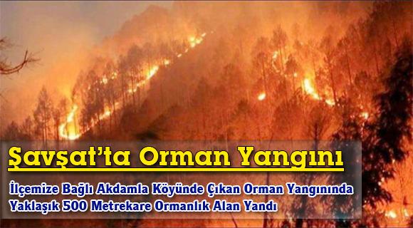Şavşat'ta Orman Yangını
